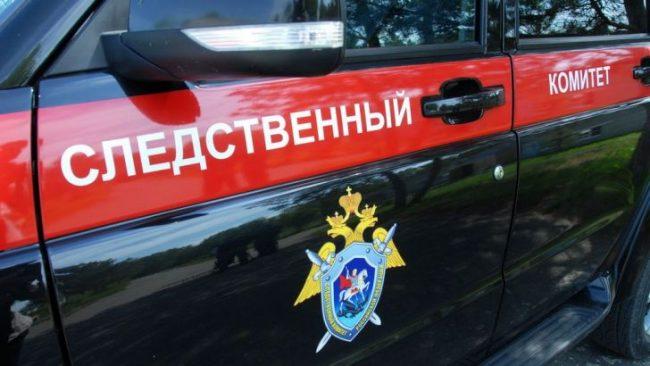Жительница Эжвинского района г.Сыктывкара подозревается в истязании падчерицы
